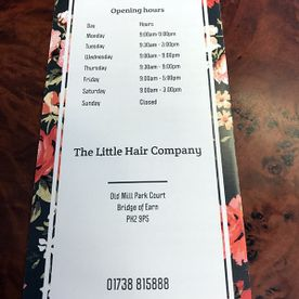 The Little Hair Company services 2
